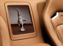 Фото салона Bugatti Veyron Rembrandt