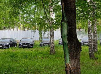 Стоянка Toyota Camry в лесу